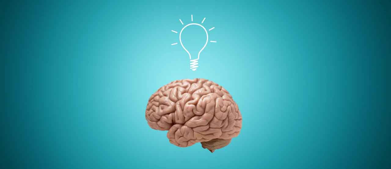 Brain Lightbulb